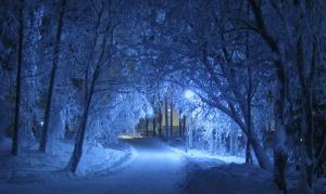 winter-69927_1920
